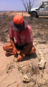 Nath and the dried up reef shark