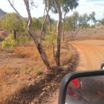 Road to Bungle Bungles