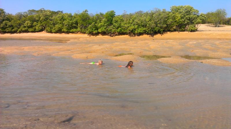 Elokin and Hendrix having a swim in Boss Creek at low tide