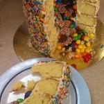 Elokin's pinata cake